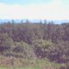 山荘ゆずりは十勝岳連峰ライブカメラ(北海道美瑛町)