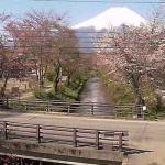 お宮橋富士山ライブカメラ(山梨県忍野村忍草)