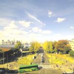 明治神宮外苑いちょう並木ライブカメラ(東京都港区南青山)