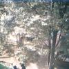 佼成育子園園庭ライブカメラ(東京都杉並区和田)