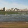 谷津干潟自然観察センターライブカメラ(千葉県習志野市秋津)