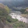 月ケ谷温泉ライブカメラ(徳島県上勝町福原)