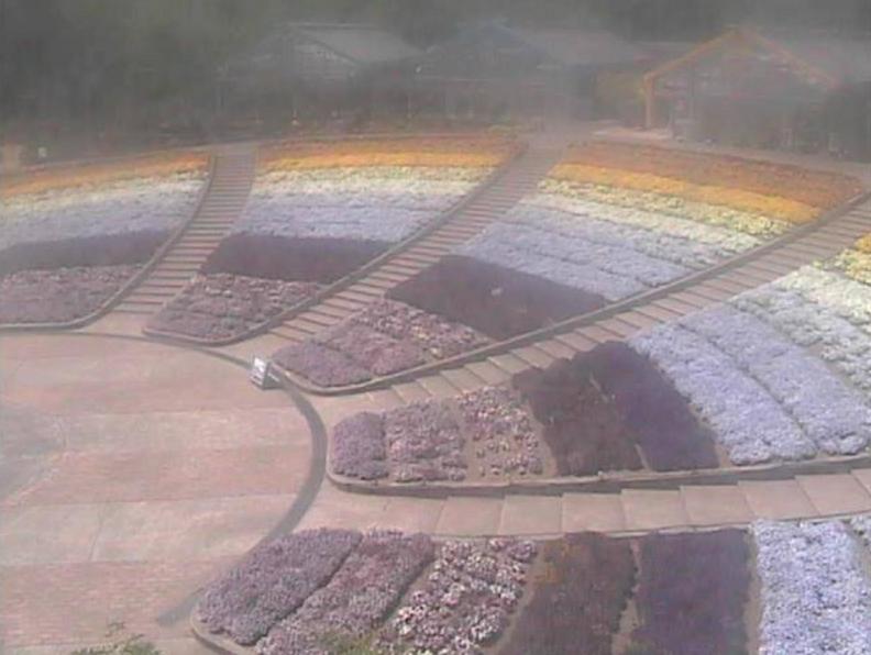 とちぎ花センターライブカメラ(栃木県栃木市岩舟町)