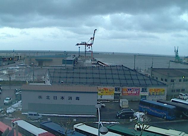 野澤ビジネススクール小樽校から小樽港