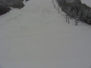 ハチ北スキー場北壁