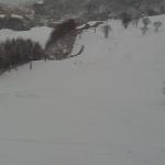 ハチ高原スキー場中央ゲレンデライブカメラ(兵庫県養父市丹戸)