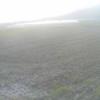 内田農場ライブカメラ(熊本県阿蘇市小里)