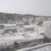 アグリウエザー美流渡ライブカメラ(北海道岩見沢市栗沢町)