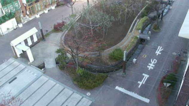 飯田りんご並木