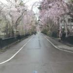 角館武家屋敷通りライブカメラ(秋田県仙北市角館町)