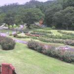 東沢バラ公園ライブカメラ(山形県村山市楯岡)
