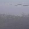 釣太郎串本の海ライブカメラ(和歌山県串本町潮岬)