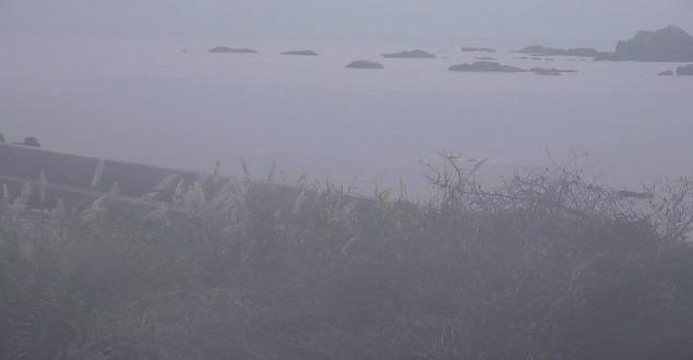 浜中渡船から串本の海