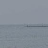 釣太郎田辺の海ライブカメラ(和歌山県田辺市目良)
