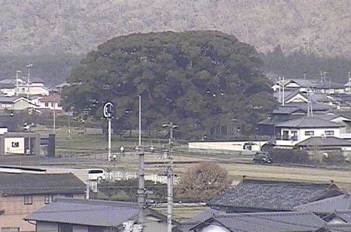 東みよし町役場庁舎屋上から加茂の大楠・国道192号・加茂谷川
