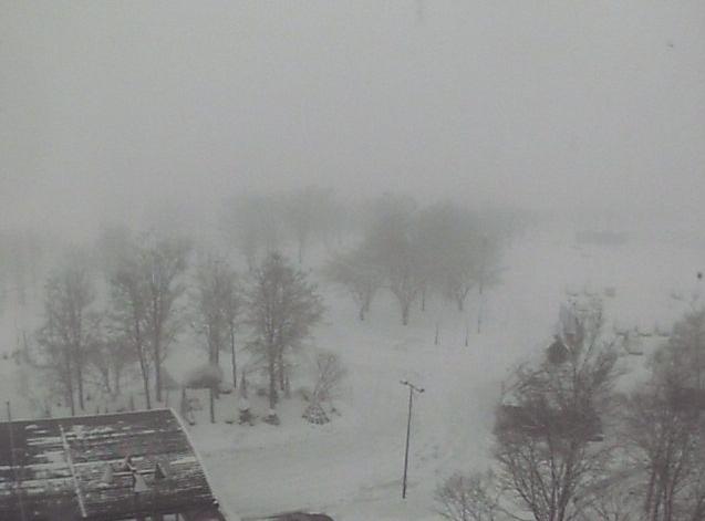 ニューグリーンピア津南スキー場