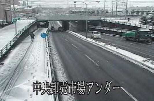 栃木県道46号宇都宮真岡線中央卸売市場アンダー