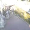 よこはま動物園ズーラシアニホンザルライブカメラ(神奈川県横浜市旭区)