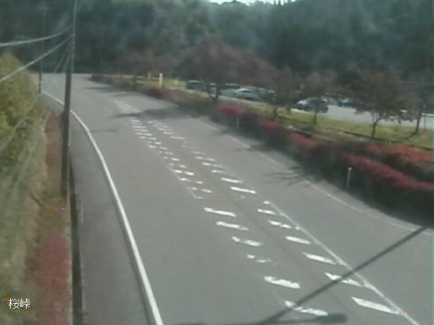 石川県道57号内浦柳田線桜峠ライブカメラは、石川県能登町当目の桜峠に設置された石川県道57号内浦柳田線が見えるライブカメラです。