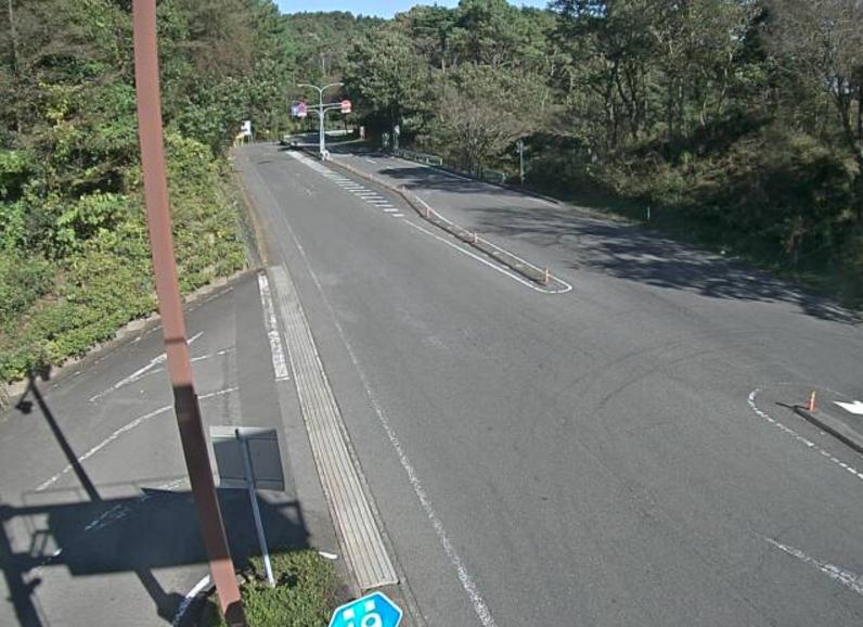 静岡県道19号伊東大仁線亀石峠ライブカメラは、静岡県伊東市宇佐美の亀石峠(伊豆スカイライン亀石峠料金所付近)に設置された静岡県道19号伊東大仁線(宇佐美大仁道路)が見えるライブカメラです。
