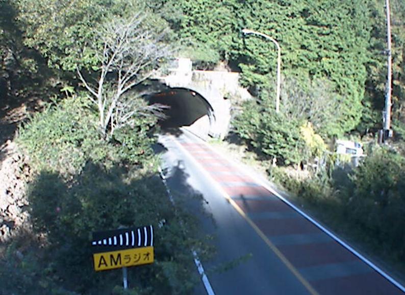 静岡県道12号伊東修善寺線冷川トンネル西側ライブカメラは、静岡県伊豆市徳永の冷川トンネル西側に設置された静岡県道12号伊東修善寺線(中伊豆バイパス)が見えるライブカメラです。