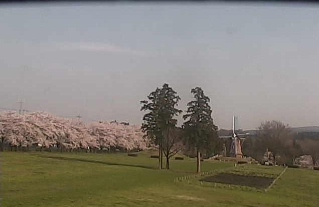 大胡ぐりーんふらわー牧場から赤城山南麓・桜