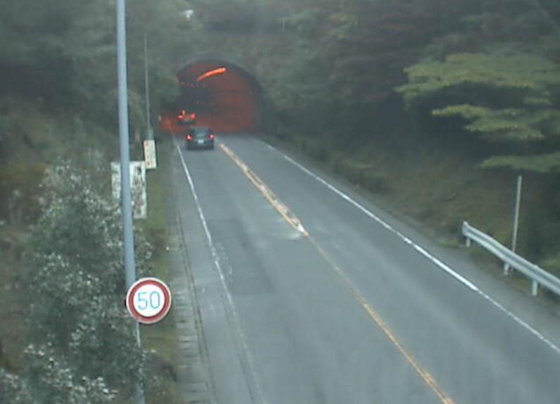 国道136号船原トンネル東側ライブカメラは、静岡県伊豆市上船原の船原トンネル東側に設置された国道136号(西伊豆バイパス)が見えるライブカメラです。