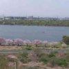 彩湖ライブカメラ(埼玉県戸田市内谷)