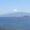 しんしゅうアソシエイツ富士山ライブカメラ(静岡県函南町桑原)