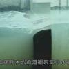 長良川河口堰管理所左岸呼水式魚道観察室ライブカメラ(三重県桑名市長島町)
