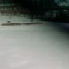岩手サファリパークゾウの森ゾウライドライブカメラ(岩手県一関市藤沢町)