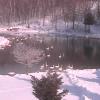 中標津保養所温泉旅館白鳥ライブカメラ(北海道中標津町)