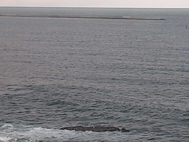 磯埼灯台から磯崎漁港・常陸那珂港・鹿島灘