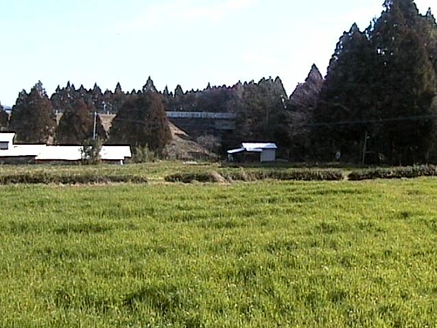 小林市某所から田園風景