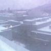 【調整中】札幌市中央卸売市場ライブカメラ(北海道札幌市中央区)
