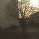 亜細亜大学太田耕造記念館ライブカメラ(東京都武蔵野市境)