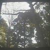 我孫子市鳥の博物館ふくろう出入口ライブカメラ(千葉県我孫子市高野山)
