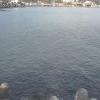 湯河原海岸津波監視ライブカメラ(神奈川県湯河原町吉浜)