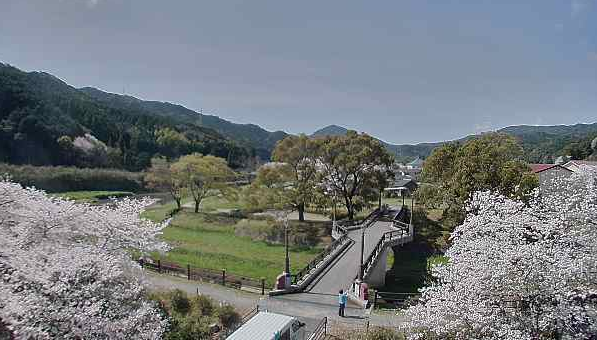 河浦町一町田地区からふれあい橋・一町田川・桜