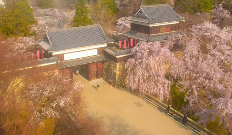 上田城跡公園から上田城櫓門・桜
