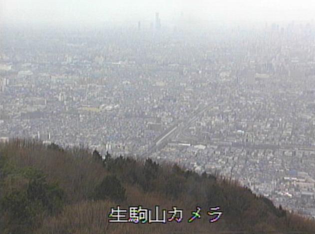 生駒山府民の森から東大阪市内
