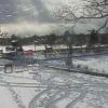 長岡造園金太郎の池ライブカメラ(北海道苫小牧市新明町)