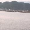 平塚沖波浪等計測データライブカメラ(神奈川県平塚市虹ケ浜)