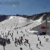 ガーラ湯沢スキー場中央エリアメロディコースライブカメラ(新潟県湯沢町湯沢)