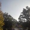 熊本大学黒髪北キャンパスライブカメラ(熊本県熊本市中央区)
