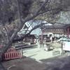 CC9太平山神社ライブカメラ(栃木県栃木市平井町)