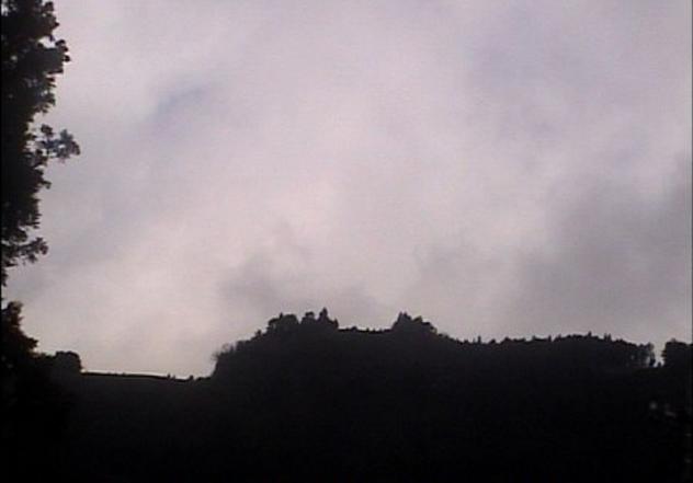 ウィングキッス朝霧から朝霧高原上空