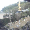 東林寺本堂西ライブカメラ(静岡県浜松市北区)