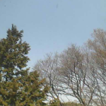 Masuo東海市上空ライブカメラ(愛知県東海市)