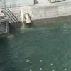 寄島地区沿岸ライブカメラ(岡山県浅口市寄島町)